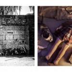 Άουσβιτς: απομνημονεύματα βαρβαρότητας